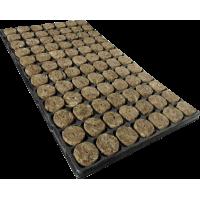 Speedgrow plug 126 p/tray 11 tray p/doos