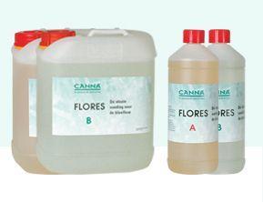 Canna Flores A+B