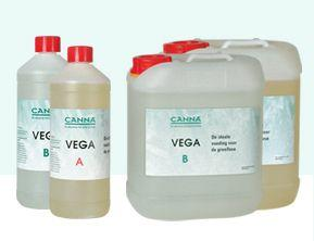 Canna Vega A+B