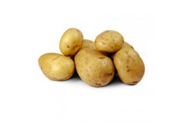 Frieslander aardappelen (biologisch) per kilo