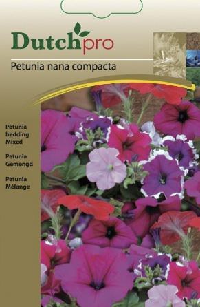 Petunia gemengd